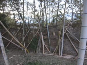 竹フェンス2014.1.11.jpg