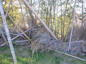 竹フェンス2014.1.4.jpg