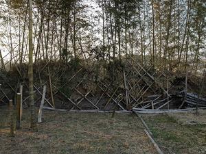 竹フェンス2018.3.4.jpg