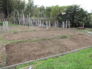 野菜ゾーン右2012.11.20.jpg