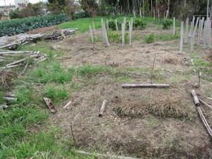 野菜ゾーン左2012.11.20.jpg