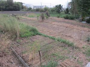 野菜栽培ゾーン2014.10.3.jpg